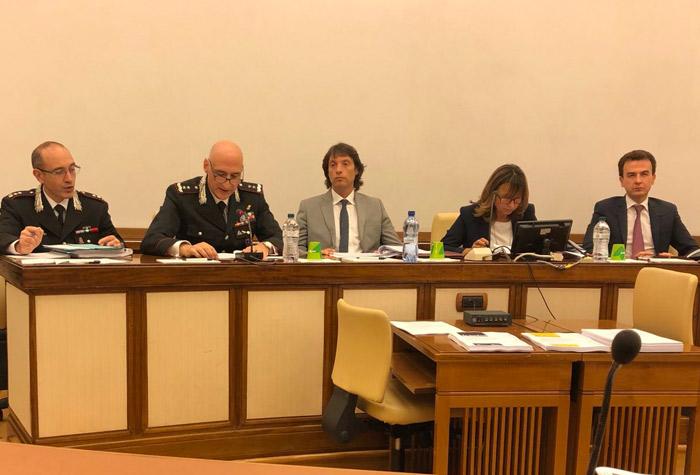 Intervento su revisione dei ruoli delle forze di polizia